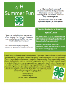 Summer Fun Flyer Page 1