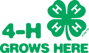 4-H Grows Here with a 4-H clover in the upper right hand corner