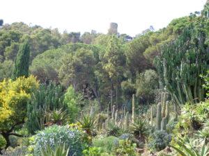 Botanical Garden, Blanes Spain