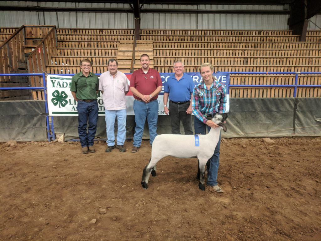 Bailey Dyson with Judges, and her grand champion breeding ewe.