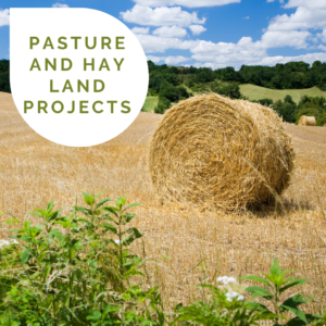 A wide open field with a circle hay bale in the foreground a bright blue sky with white puffy clouds and a teardrop overlay with the words Pasture and Hay Land Projects