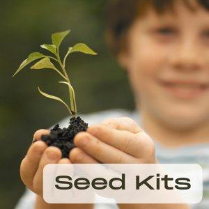 a young boy holding a seedling with soil around the base