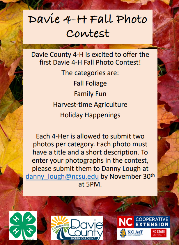4-H Fall Photo Contest