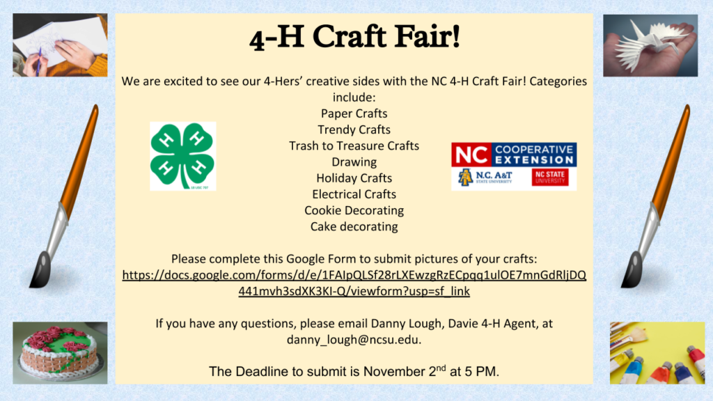 Davie County Christmas Crafts 2020 Fall 4 H Events | North Carolina Cooperative Extension