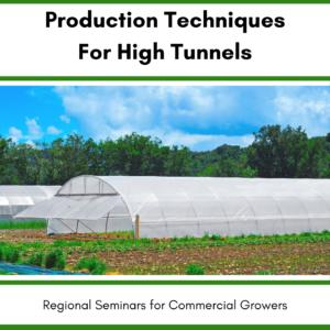 High Tunnel garden