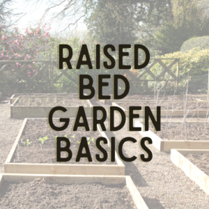 Six raised bed garden plots with a fence in the background with trees behind it