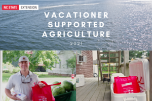 photo collage of vsa bags, farmers, and water.